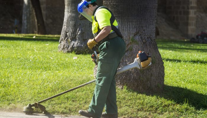 Barcelona, Spain - October 22, 2014: Garden maintenance worker of the City of Barcelona cutting the grass a garden Les Rambles with a mowing machine